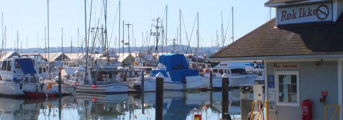 Bainbridge Island Homes and Condos for Sale | Kat Gilmore